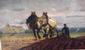 Ploegende paarden
